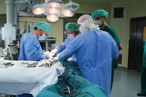 Хирургия шейный отдел позвоночника