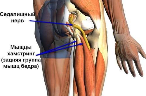 Заболевания ногтевой пластины на ногах лечение